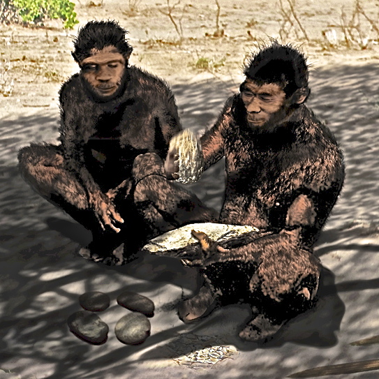 If this Homo erectus couple in Daka, Africa felt compelled to throw the stones at their feet, they could