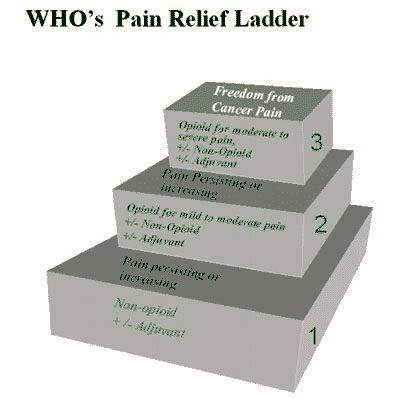 painladder