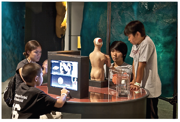 Hands-on, highly visual, and interactive exhibits like the one shown here offer a multisensory learning experience--this is what the Gokhale Method offers, too